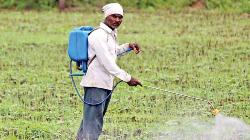 farmers pesticides